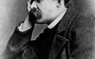 Ницше Фридрих (биография)
